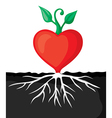 heart sprout vector image vector image