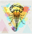 hipster realistic scorpion on artistic background vector image vector image