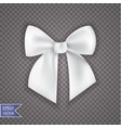 realistic bow and ribbon isolated on transparent vector image vector image