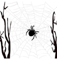 Realistic spider web with spider vector image