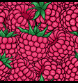 seamless pattern pink raspberries with black vector image vector image