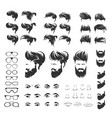 set elements of human face with beard hirestyle vector image