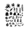 hand drawn brush plants vector image
