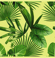 tropical palm leaves seamless background vector image vector image