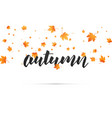 autumn background autumn lettering and falling vector image
