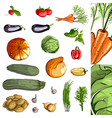 Fresh vegetables green collection vector | Price: 3 Credits (USD $3)