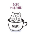 funny cat in a cup coffee for greeting card vector image