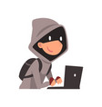 hacker in hoodie and black mask stealing vector image vector image