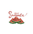 hello summer lettering with watermelon vector image