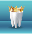 realistic white tooth in golden crown on blue vector image vector image