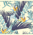 strelitzia flowers with exotic blue palms leaves vector image vector image