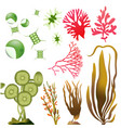 underwater algae seaweed elements vector image vector image
