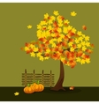 Yellow and Orange Maple vector image vector image