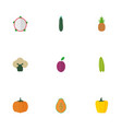 flat icons pitaya ananas gourd and other vector image vector image