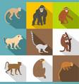 monkey icon set flat style