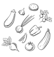 Organic fresh farm vegetables sketch icons vector image vector image