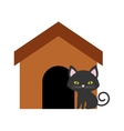 cat nose funny animal brown house vector image vector image