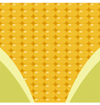 corn surface with leaf vector image vector image