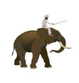 man riding an elephant vector image