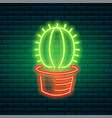 neon signs and icons green cactus and tropical vector image vector image