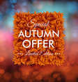 Special autumn offer advertisement poster Blurred vector image vector image