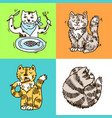 beautiful hand drawn cute cats vector image vector image