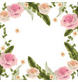 beauty roses with branches leaves background vector image vector image