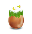 brown broken eggs on white background vector image
