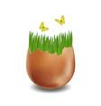 brown broken eggs on white background vector image vector image