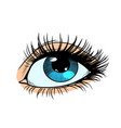 female eyes with blue pupil vector image vector image
