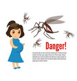 pregnant woman attacked by mosquitoes vector image