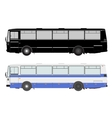 Set bus on a white background vector image