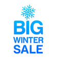 big winter sale vector image vector image