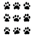 black footprints of lions vector image vector image