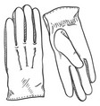 black sketch - classic leather gloves vector image vector image