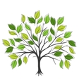 Hand draw abstract green tree vector image