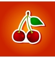 on the theme of the logo for cherry vector image