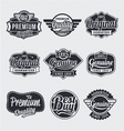 Retro vintage label set vector