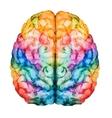 Watercolor brain vector image