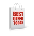 Best offer today shopping bag vector image