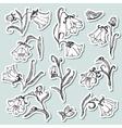 Doodle floral stickers set vector image