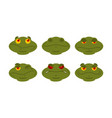 frog emoji set toad avatar good and evil vector image vector image
