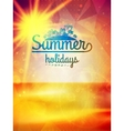 Summer holidays typography background vector image