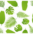 tropicla seamless pattern with palm and fern vector image vector image