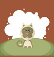 angry cat on a background of white circles vector image