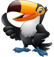 cartoon funny toucan giving thumb up isolated on w vector image vector image