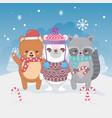 cute polar bear raccoon and teddy snow candy canes vector image