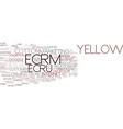 ecrm word cloud concept vector image vector image