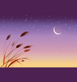 leaves of grass and stars in sunrise sky vector image vector image