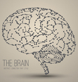 Brain abstract vector image vector image